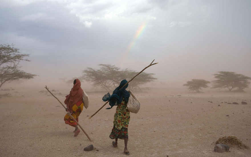 Searching for forage for their remaining few goats after a terrible three-year long drought two Gabbra women Ilo Jarso and Gonche Salesa make their way through a dust-storm as they walk back into Kalacha.