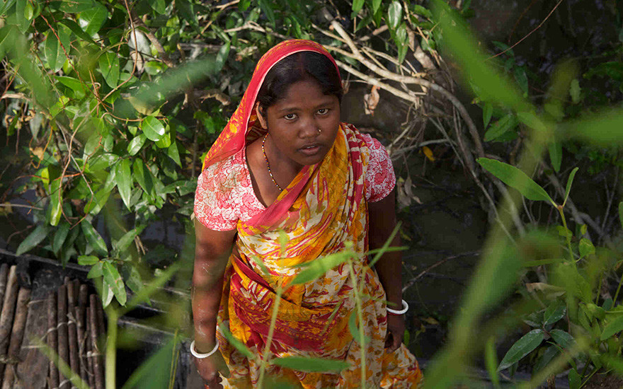 Lakhhi Munda searches the Sundarbans for fuel wood