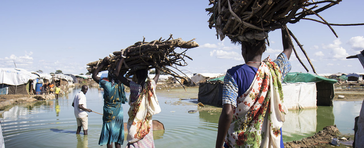 Women carry firewood back to their homes through contaminated flood water