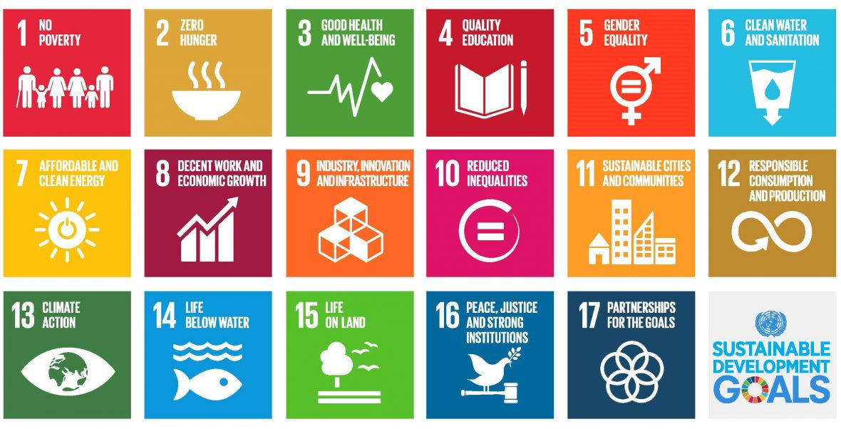The United Nations' Sustainable Development Goals