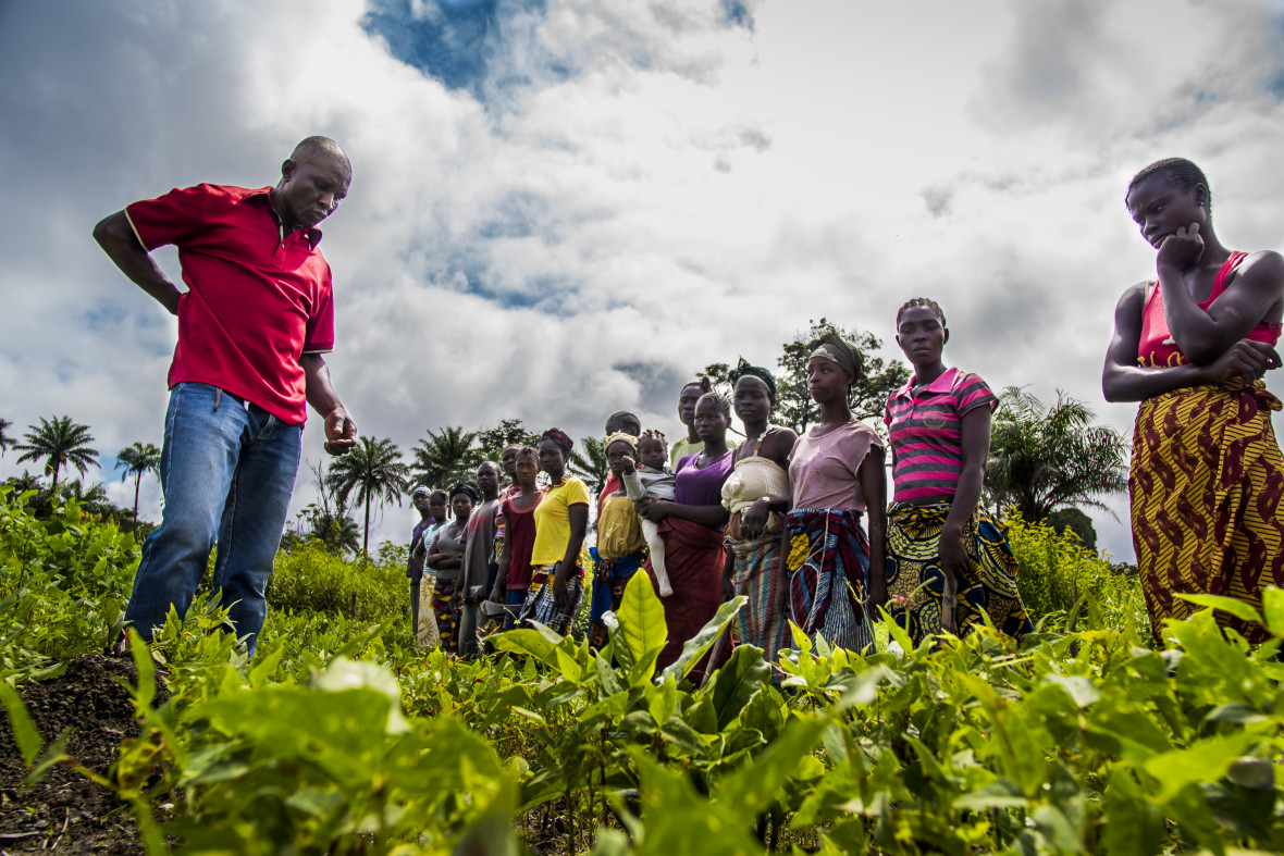 Forkpa Blamah, District Program Supervisor for Concern, with members of a Farmer Field School