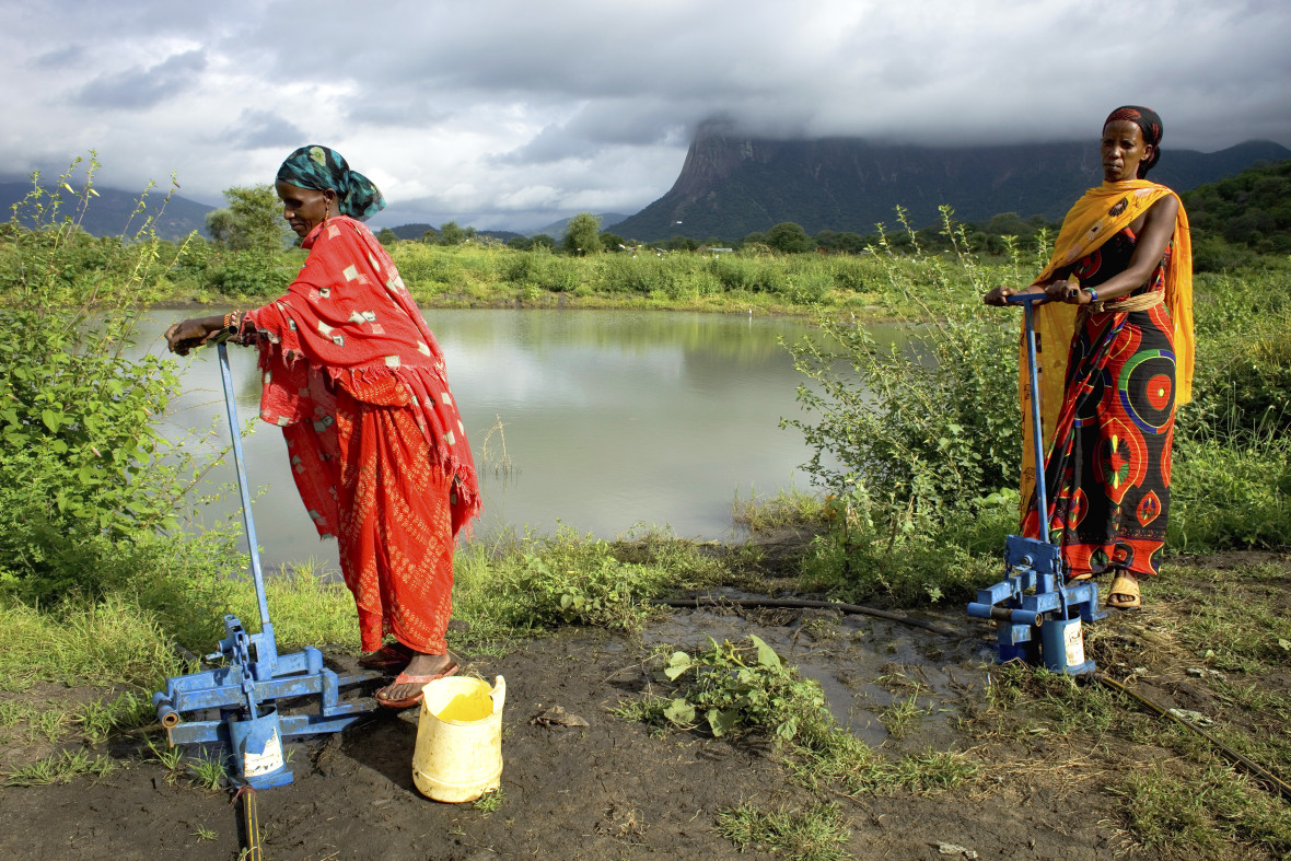 Women pump water using treadle pumps