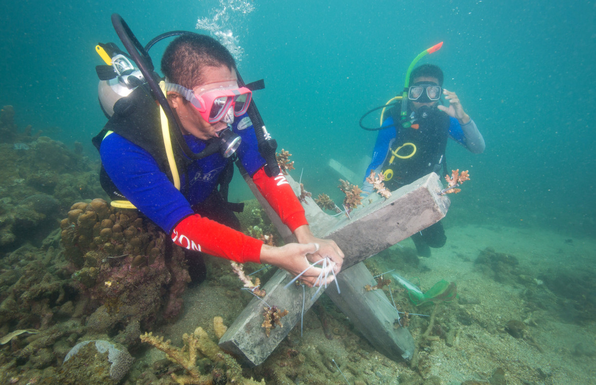 Divers installing reefs in the Philippines