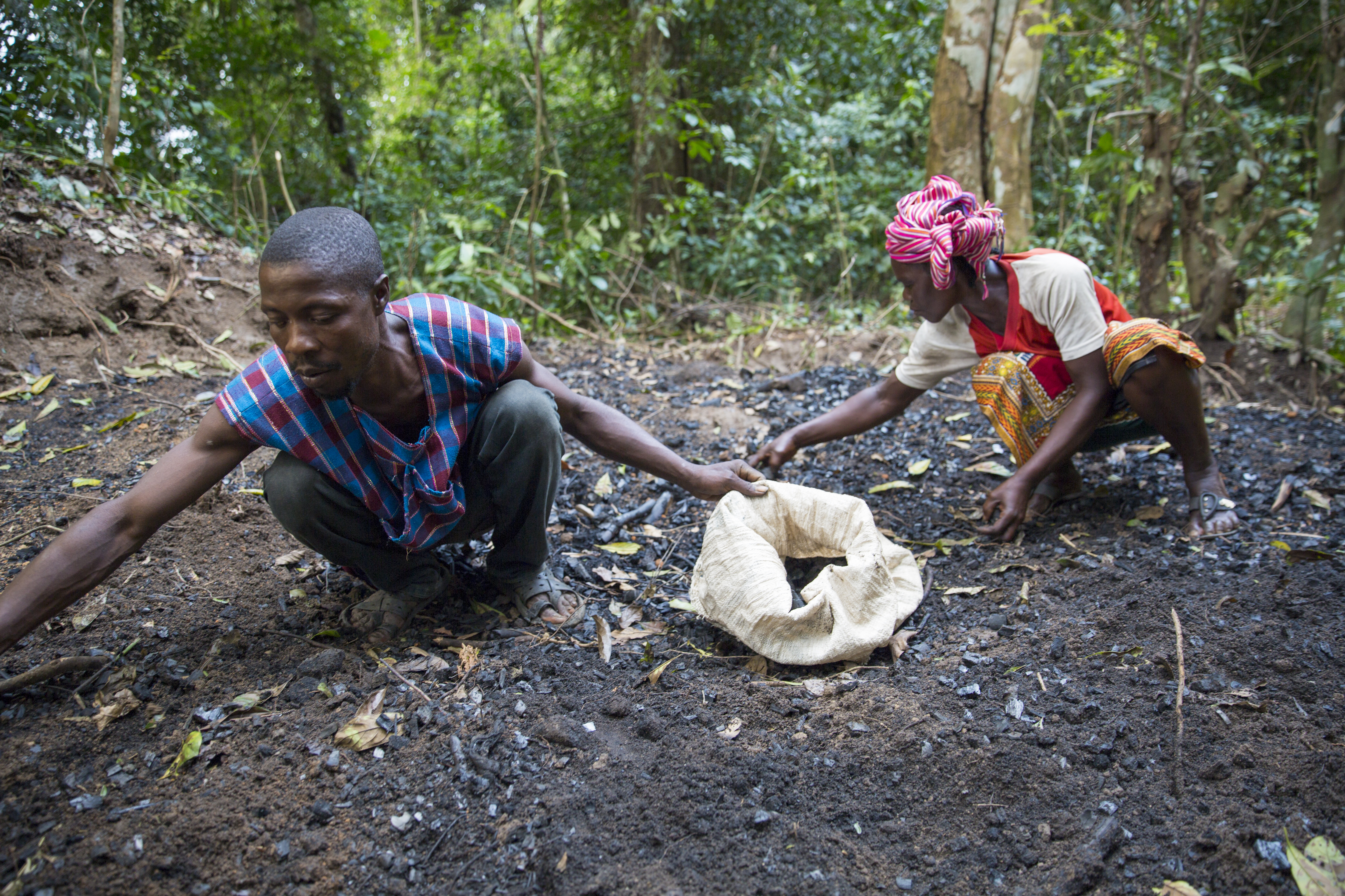 Man and woman collecting charcoal at a pit in the forest