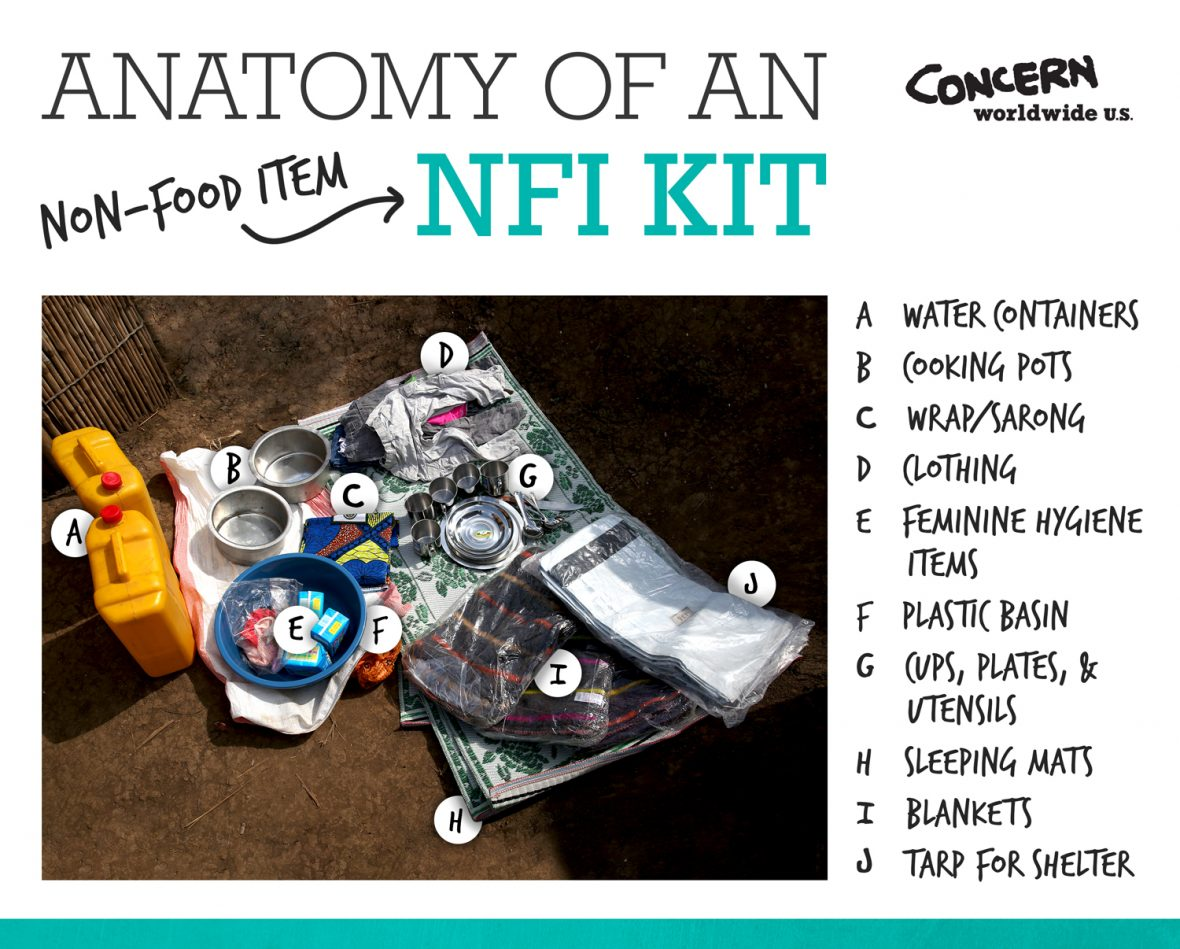 Anatomy of a non-food item (NFI) kit