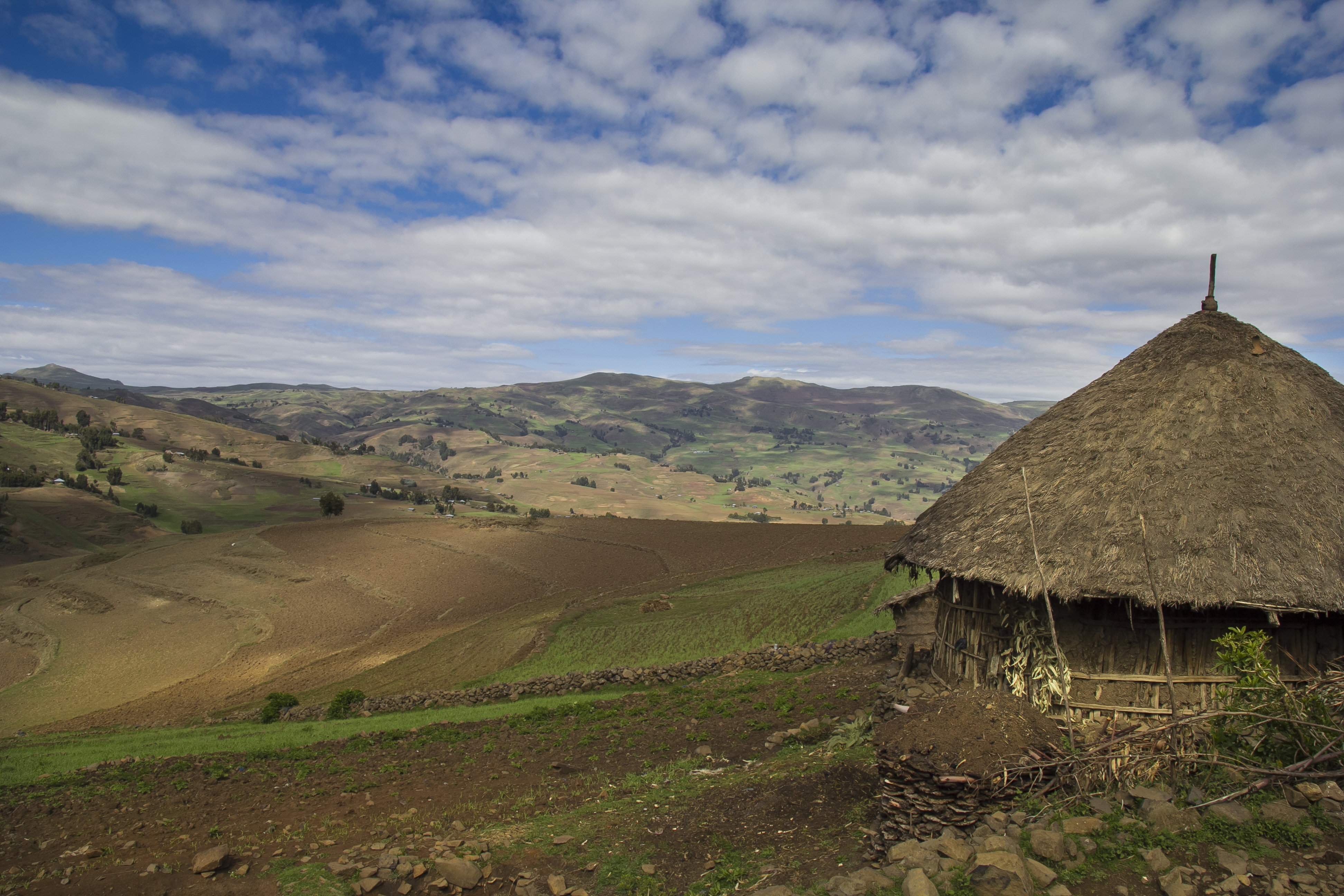 Thatched hut in rolling hills
