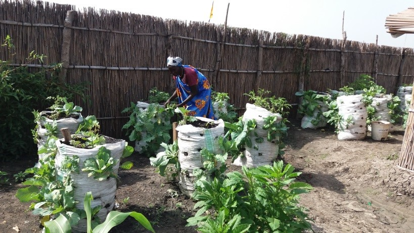 A woman tends to a garden in South Sudan