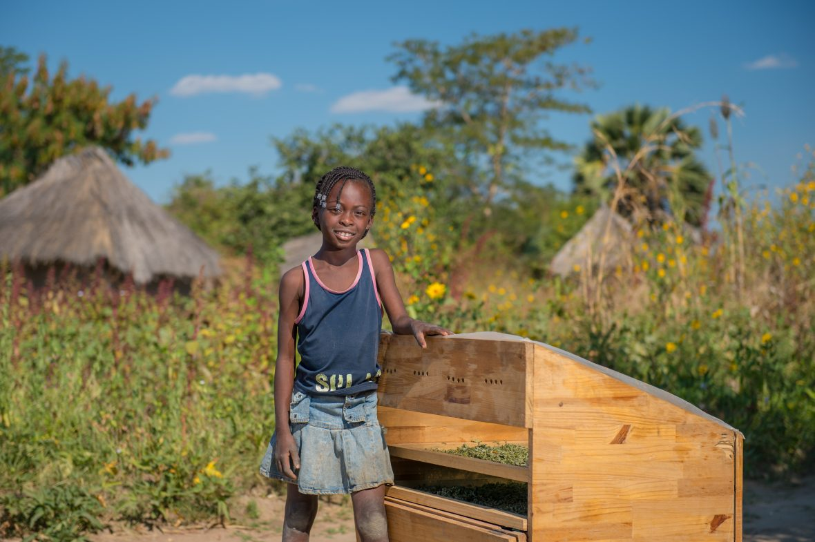 A young girl stands next to a solar dryer in Zambia