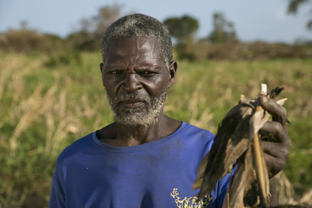 Ernesto Gambulene with the ruined maize crop from his field in Lamego, Mozambique.