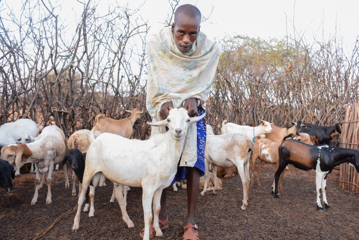 Ltagolon Lesurmat with one of his new Galla goats in Marsabit, Kenya.
