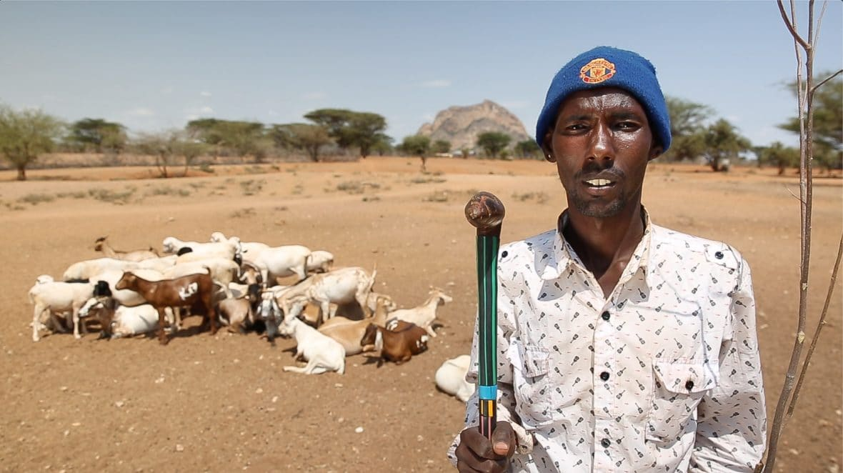 A pastoralist in Marsait, Kenya, with some of his livestock.