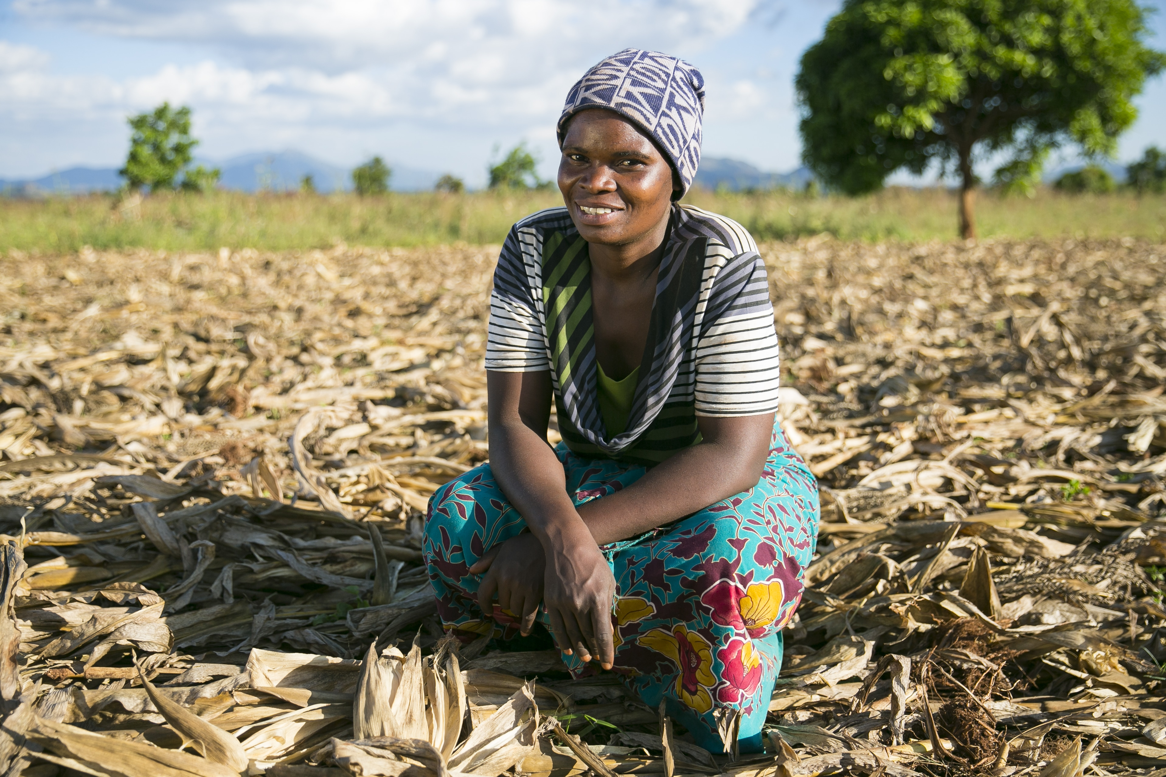 A women farmer in Malawi with a conservation agriculture plot