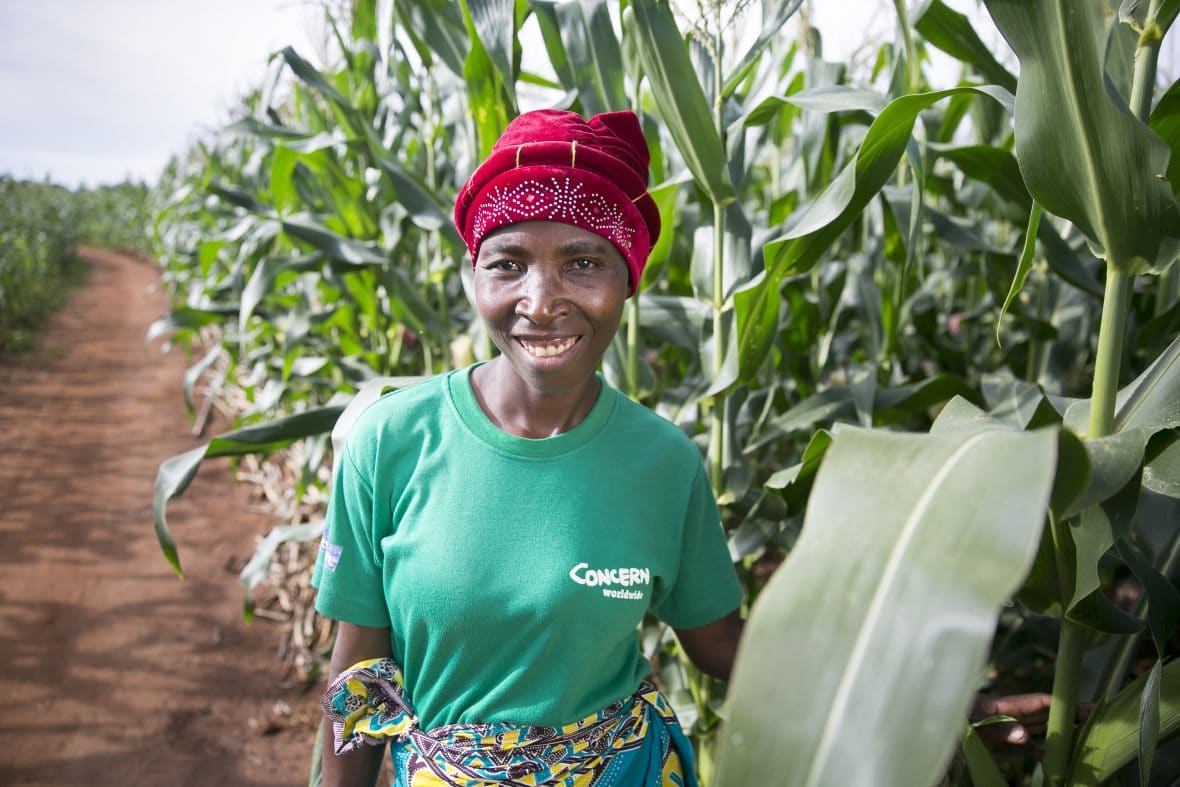 A woman farmer in Malawi with her maize crop