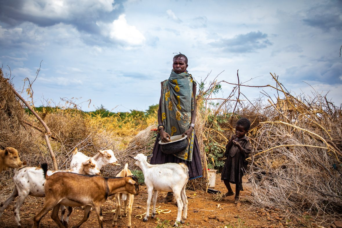 Woman with goat herd outside her home in Turkana, northern Kenya