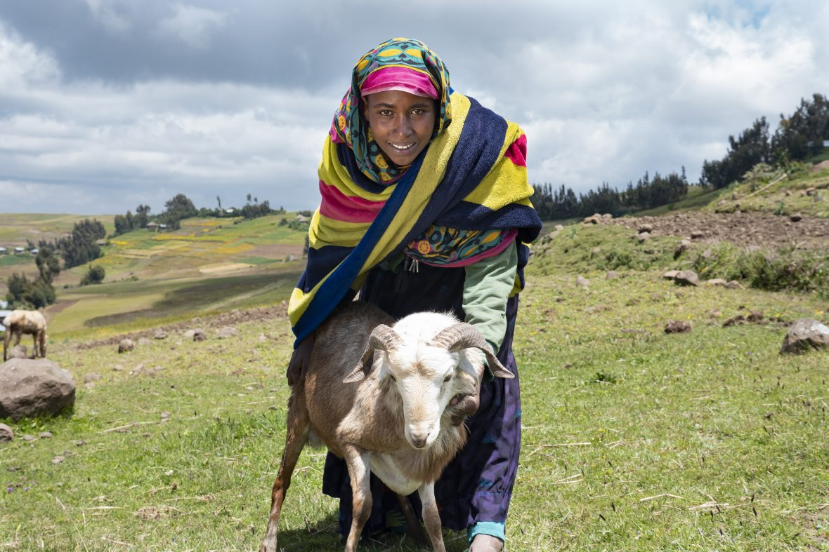 Ethiopian woman with sheep