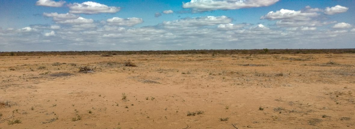 semi arid land in Tana River County, Kenya